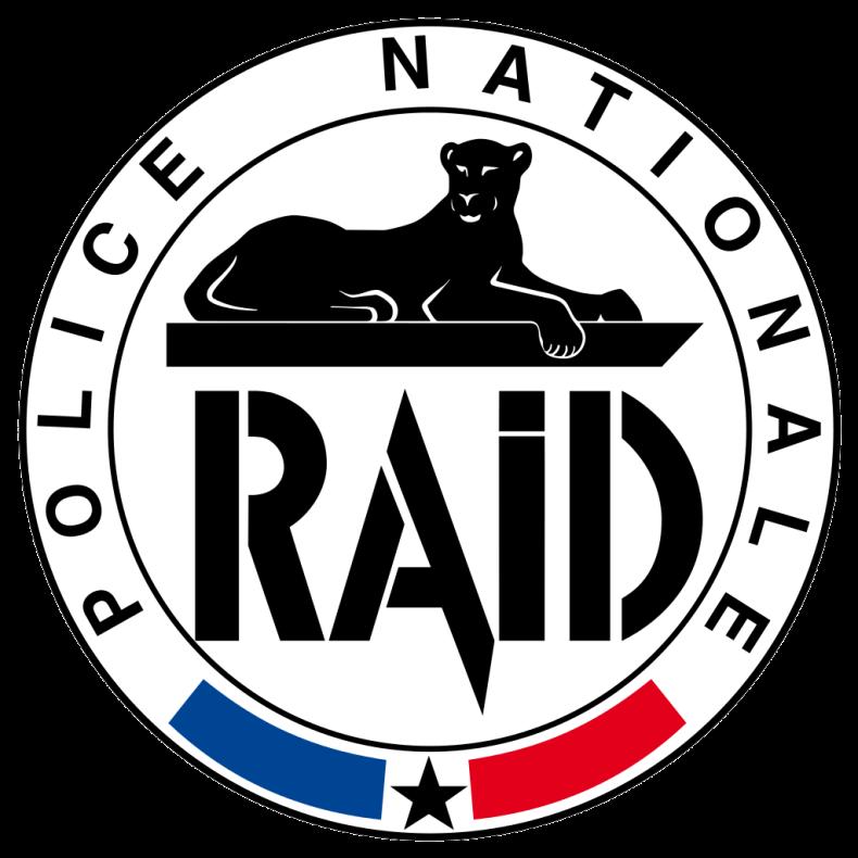 Logo_RAID.svg